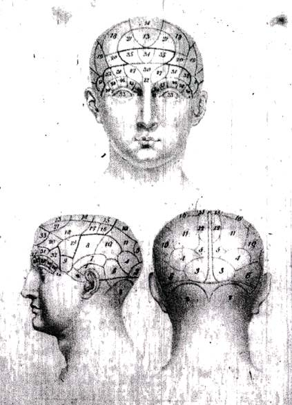 Hints About Phrenology- Explanations of the Plate