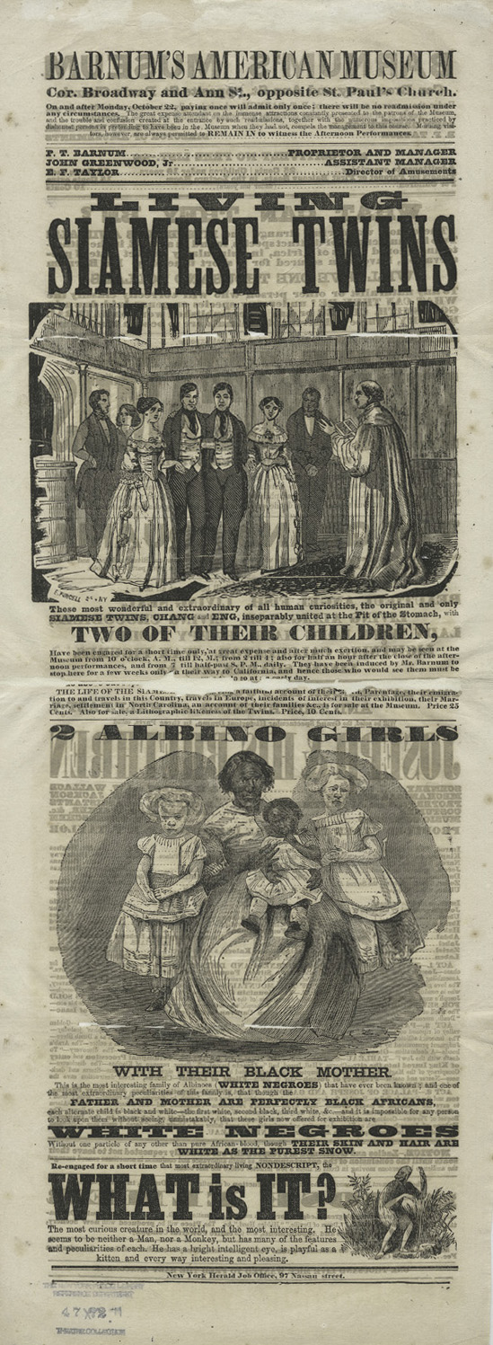 Barnum American Museum Advertisement: Living Siamese Twins,1860